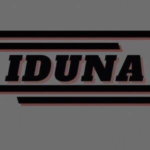 Group logo of IDUNA