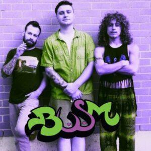 Group logo of BUSM – Big Up Sour Mash